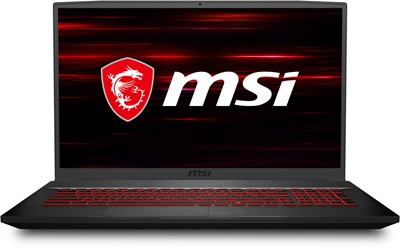 MSI GF75 Thin 10SC-003XTR i7-10750H 8GB 256GB SSD 4GB GTX1650 17.3 Dos Notebook