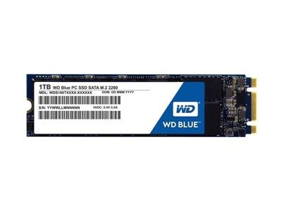 WD 1TB Blue 3D NAND Okuma 560MB-Yazma 530MB M.2 SSD (WDS100T2B0B)